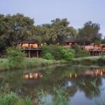 Mashatu Safari