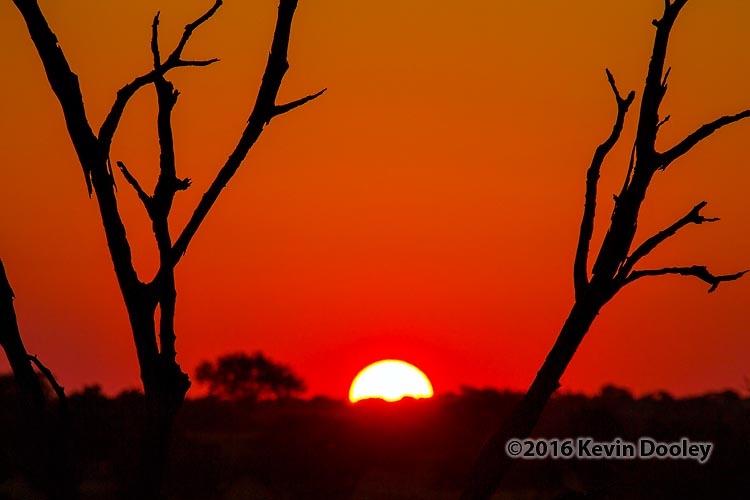 Sunset and Sunrise Photography on Safari