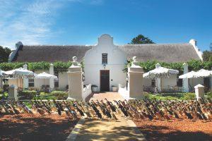 African Wine Safari