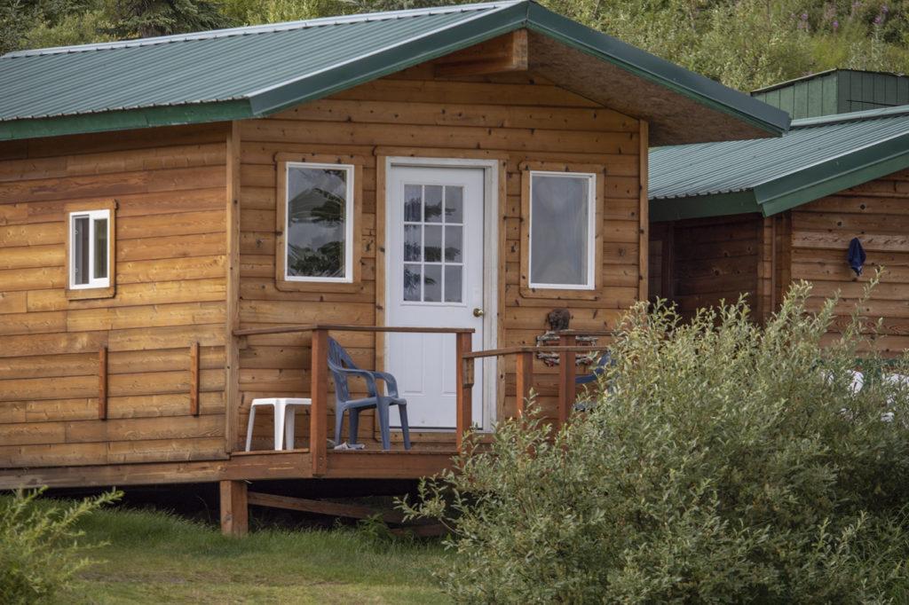 Alaska Cabin Bear safari